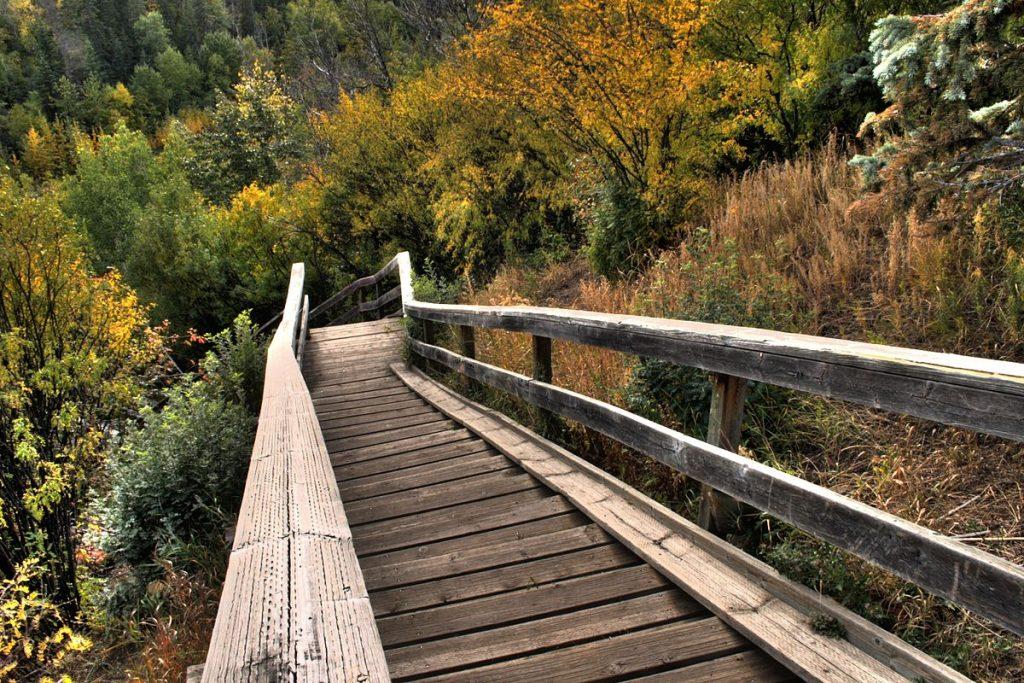 Staircase in Edmonton River Valley